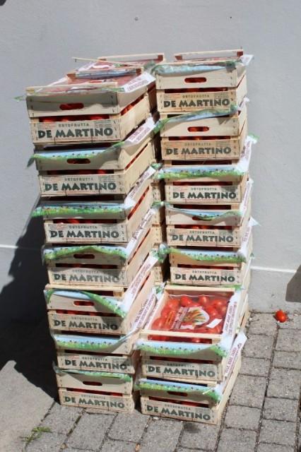 Das Tomatenrätsel - Teil I